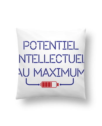 Coussin Synthétique Doux 41 x 41 cm Potentiel Intellectuel au Maximum par tunetoo