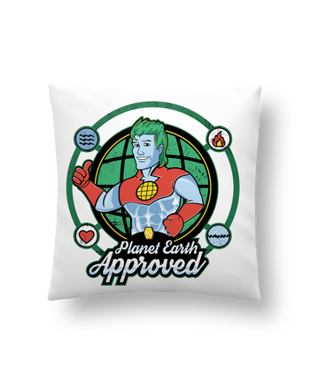 Coussin Synthétique Doux 41 x 41 cm Planet Earth Approved par Kempo24